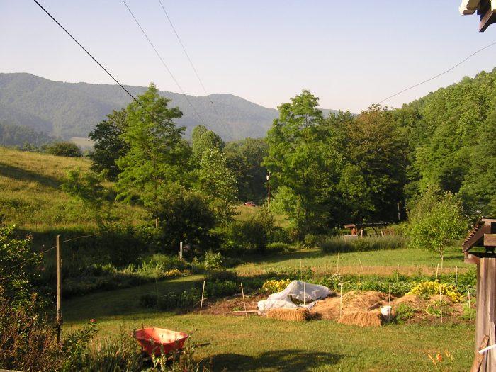 CW workshop view