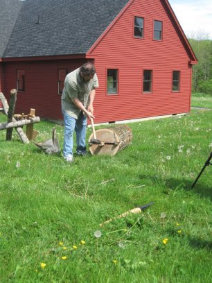 busting open an oak at CFC