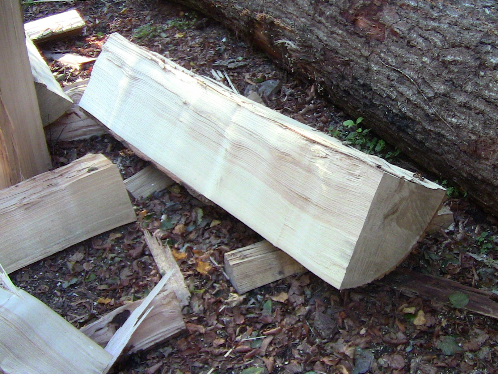 White Ash Firewood