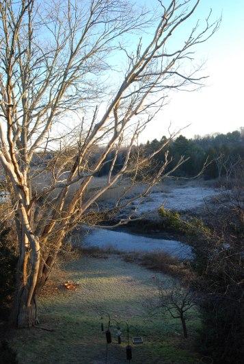 Jones w frost