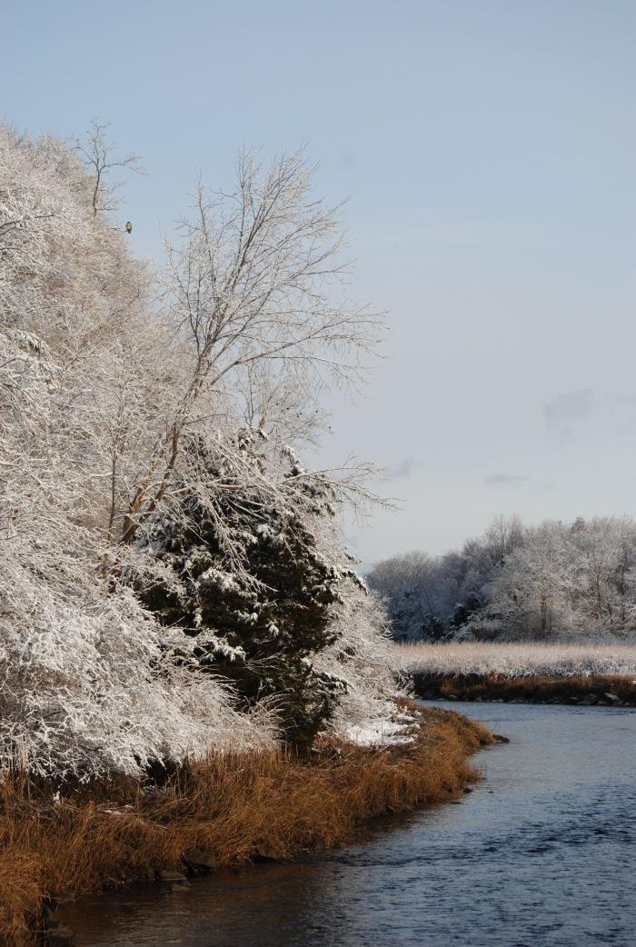 jones snow vertical