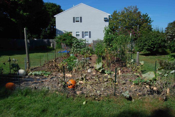 ron's garden