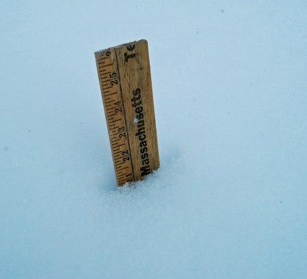 snow sample