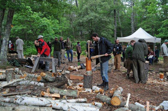 stomping at the woodpile